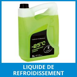 liquide-refroidissement-courroie-de-distribution-garagiste-seine-et-marne-77